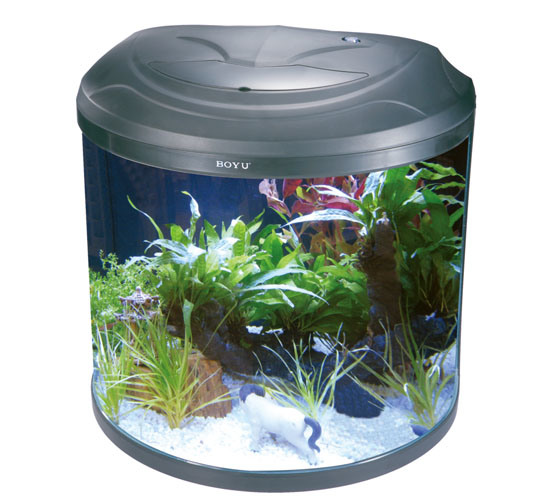 Bo te de poissons de demi lune d 39 aquarium de boyu byg 86 for Filtre aquarium rond