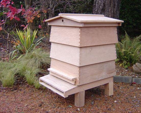 ruches de wbc ruches de wbc fournis par china beehive company pour les francophonies. Black Bedroom Furniture Sets. Home Design Ideas