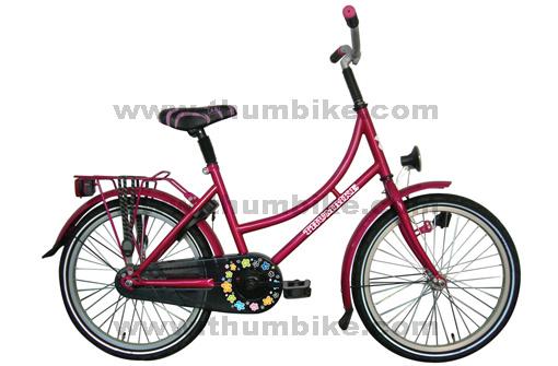 bd bicycle co ltd