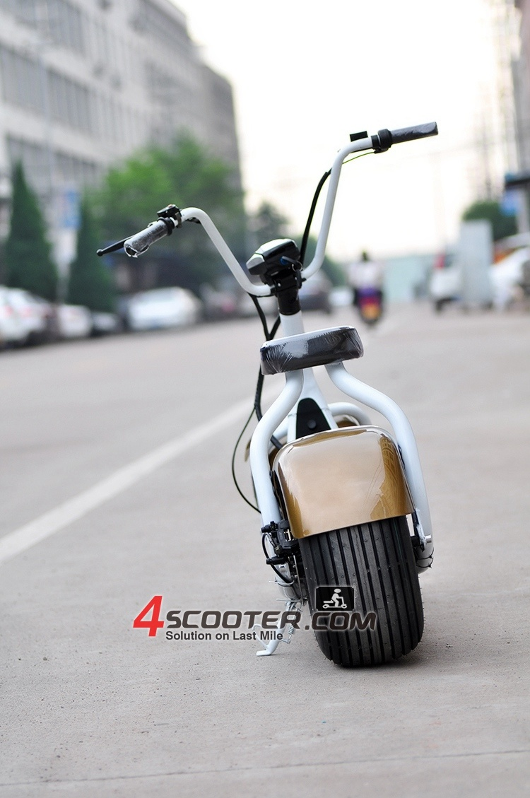 scooter lectrique de 2017 de la grande roue 800w cocos neufs de ville photo sur fr made in. Black Bedroom Furniture Sets. Home Design Ideas