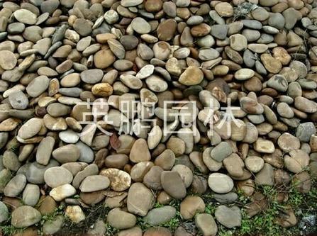 Pierre pour rocaille jardin