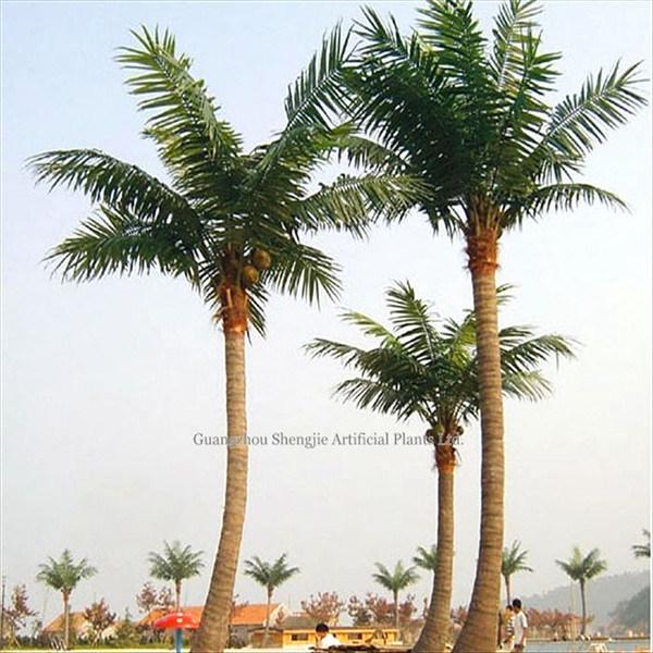 Arbre de noix de coco de am nagement ext rieur de tree fake arbre de noix de coco de - Arbre noix de coco ...