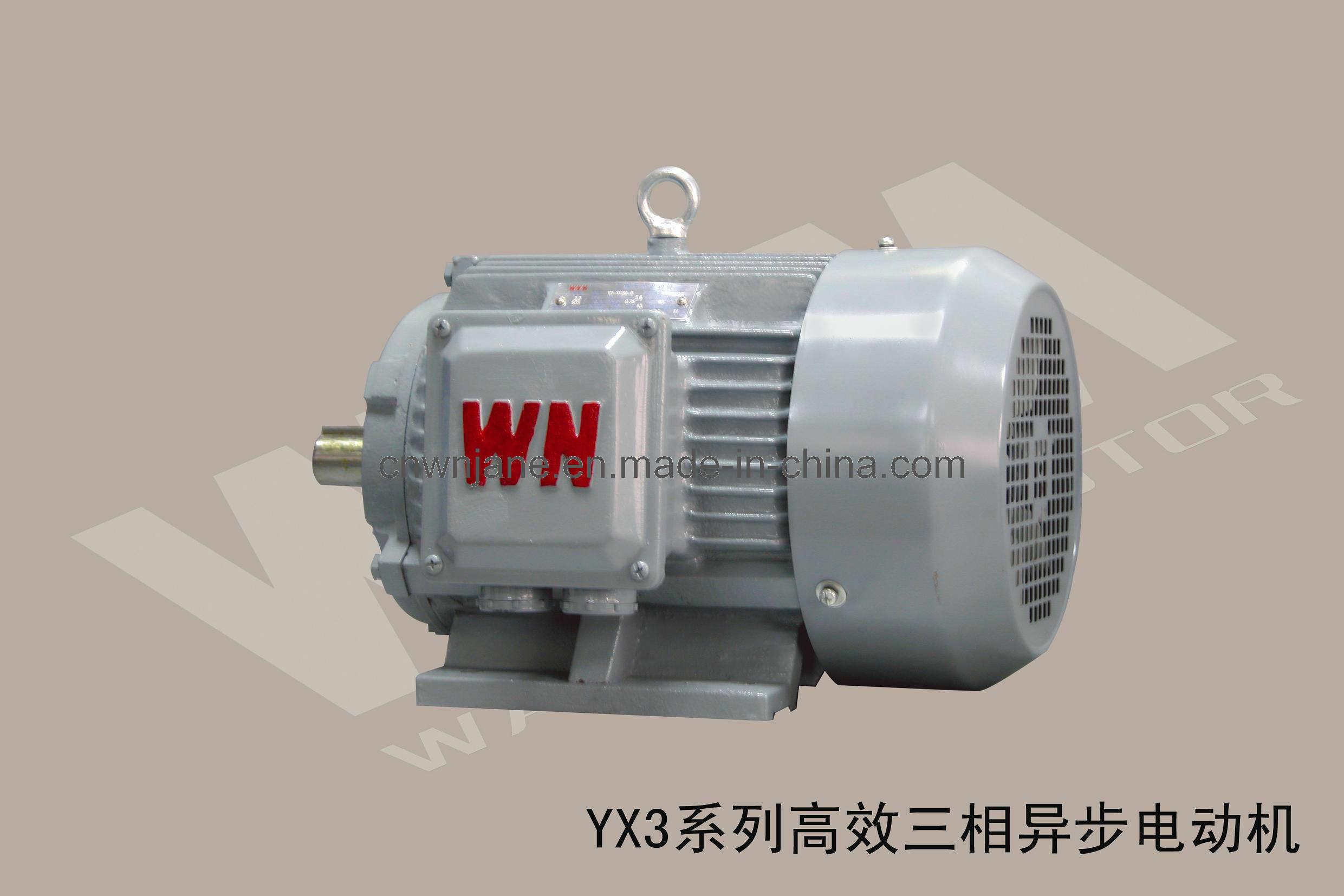 Motor De Ca Gb18613 2006 Iec Motor De Ca Gb18613 2006