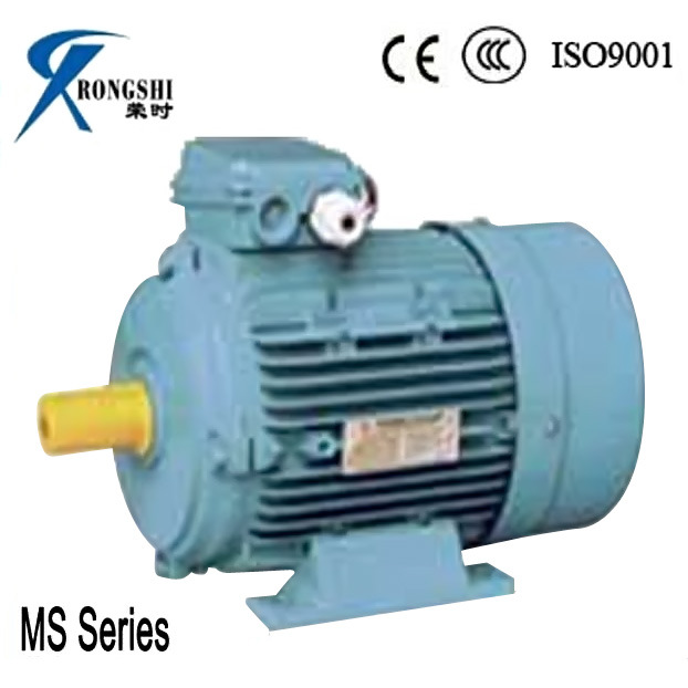 Ms Motor Electric Three Phase Electric Water Pump Motor