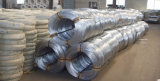 Binding Galvanized Wire
