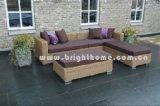 PE Ranttan Outdoor Furniture (BG-111)