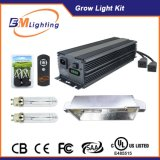Dual 315W CMH Bulbs Double Output 630W Hydroponic Grow Kit