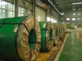 Stainless Steel Coil-18 with High Quality