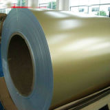 Color Coated Steel Coil PPGI for Industrial Buildings