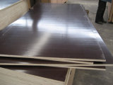 Imported Brown Film Faced Plywood with Dynea WBP Glue
