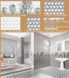 Ceramic Wall Tile Floor Tile