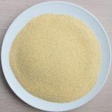 New Crop High Quality Dehydrated Garlic Granule