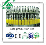 Fruit Juice Making Factory Juice Factory Equipment Fruit Juice Machine Manufacturers