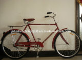 Afica Special Model Bicycle with Rear Coaster Brake (SH-TR036)