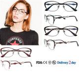 Stainless Steel Frame Glass Latest Eyeglasses Frame Fashion Eyewear