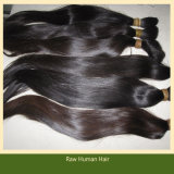 Tangle Free Virgin Remy Human Hair Raw Hair (B-11)