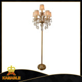 Europe Type Furniture Crystal Floor Lamp (ML9828-5+1)
