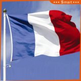 Custom Waterproof and Sunproof National Flag France National Flag