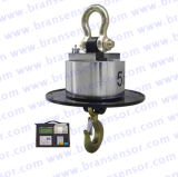 Wireless Crane Scale with Indicator and Printer (OCS-SWL6)
