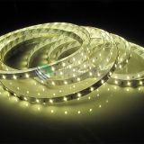 High Bright 12V/24V DC Quality SMD2835 LED Strip 120LEDs/M