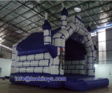 Giant and Big Inflatable Bounce House with Carton Printing (A070)