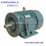 Y Series Three Phase Electric Asynchronous Motor