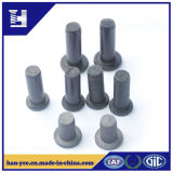 Rivet of Low Carbon Steel and Nickel Plating