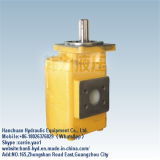 China Crawler Steel Hydraulic Gear Pump with Flow Rate (TY160)