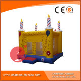 2017 New Outdoor Amusement Products Toys Inflatable Bouncy Castle for Kids T1-220