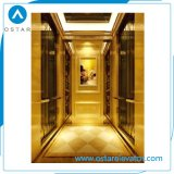 Comfortable and Luxurious Small Home Lift Villa Elevator