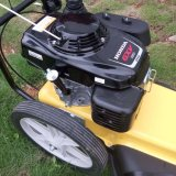 Briggs 675exi Honda Gxv160 Engine Wheeled Walk Behind Trimmer Edger