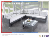Wicker Small Corner Sofa Set for Outdoor (TG-051)