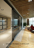 Frameless Glass Office Partition, Glass Partition Wall, Glass Divider