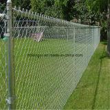 Galvanized Chain Link Wire Mesh Fencing/Diamond Wire Mesh