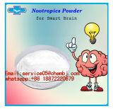 Nootropics Piracetam Raw Powder Piracetam for Improving Intelligence (7491-74-9)
