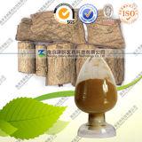 High Quality Health Care Product Eucommia Ulmoides P. E