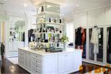 Home Furniture Modern Wardrobe Cabinet (BY-W-21)
