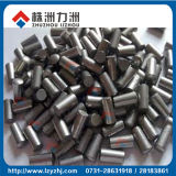 Competitive Price Tungsten Carbide for Tyre Pins for Bike
