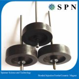 Hard Ferrite Plastic Injection Magnet with Shaft for Motor