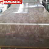PPGI/PPGL/Gi/Gl Galvanized Color Coated Steel Coil (CC-11)