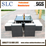 Rattan Table and Chair Set/Outdoor Dining Table Set (SC-A7222)