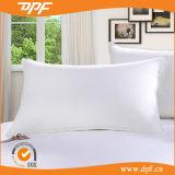 Polyester Cushion Insert (DPF061144)