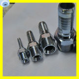 Stainless Steel Hose Fitting Male Female Fitting Threading Connect Fitting