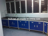 China Factory Made Clinical Laboratory Wall Bench