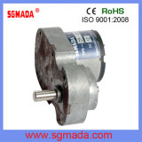Electrical Industrial DC Gear Square Motor
