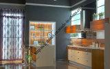 High Gloss Flower Design UV Kitchen Cabinet (zs-419)
