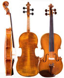 Viola, Electric Viola/High-Grade Soloviolin