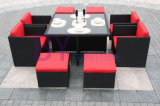 PE Rattan Dining Set Table Set Home Furniture