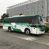 High Quality 37 Seats Tourist Bus for Sale