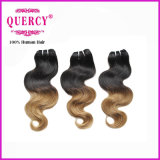 Wholesale Factory Price Hair Weft, Omber Color Hair Brazilian Human Hair